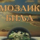 MOZAIK BILJA