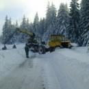 Sječa šume po snijegu u Rogticu