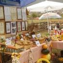 Regionalna poljoprivredna izložba u Rogatici