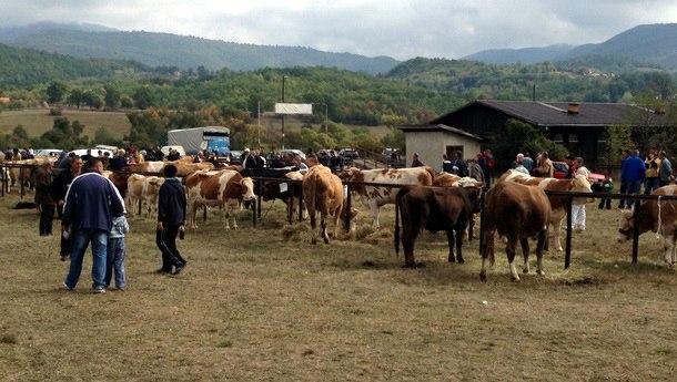 48. poljoprivredna izložba u Rogatici