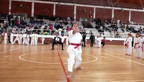 Karate Višegrad
