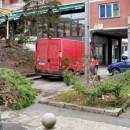 Posječeno drvo u centru Foče