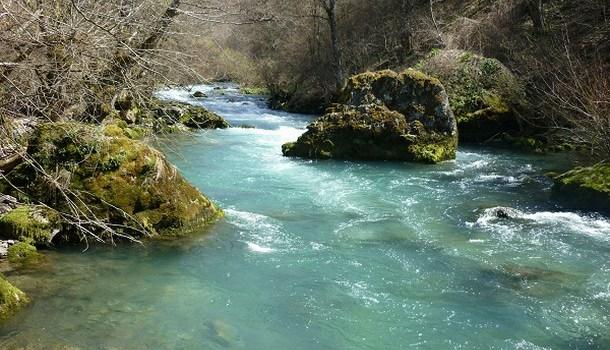 Rijeka Bistrica
