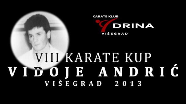 Kaate Kup Vidoje Andrić 2013