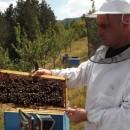 Pčelar iz Višegrada