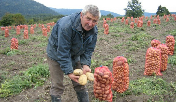 Dragan Džida sa krompirom