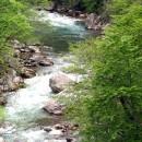 Kanjon Sutjeske