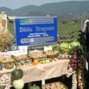 Džida Dragomir 1