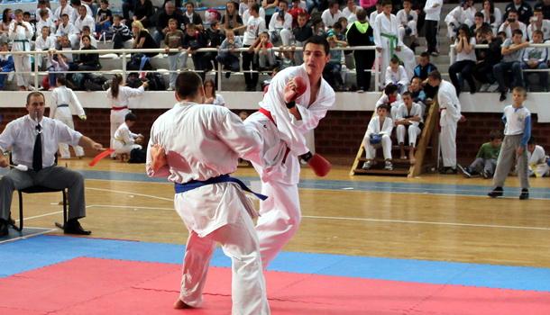 Karate-Vidoje Andrić 2013