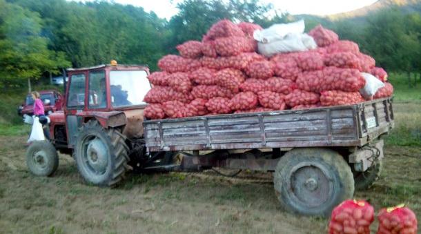 Krompir u Rudom