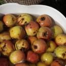 Jabuke-sirće