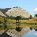 Zelengora-jezera