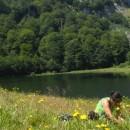 Branje borovnice na Zelengori