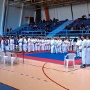 Karate - Bileca 2014