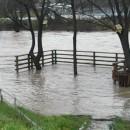 Poplave u Foci