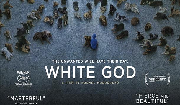 Film-Bijeli Bog