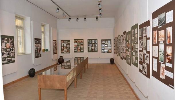 Muzej u Foci
