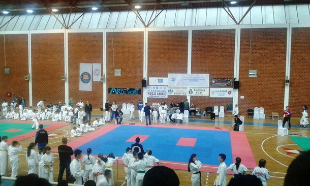 Karate Vidoje Andric