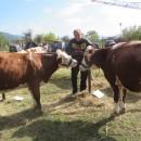 Poljoprivredna izlozba u Rogatici