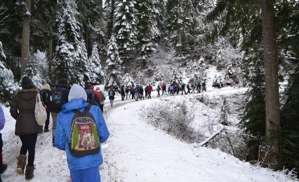 Planinari Mika Savic Piri 2