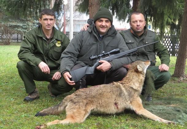 Savo Minic ubio vuka