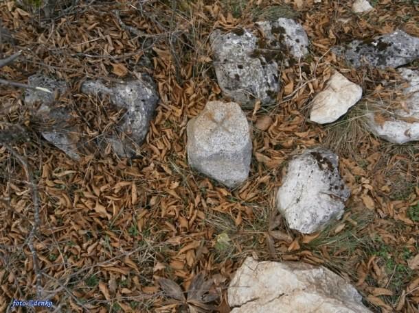 Stecci Ljun (2)