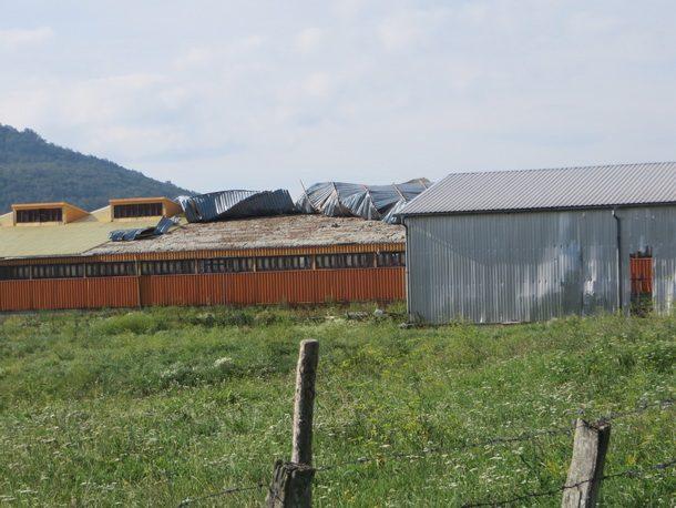 Rogatica-propada boricki ovcarnik