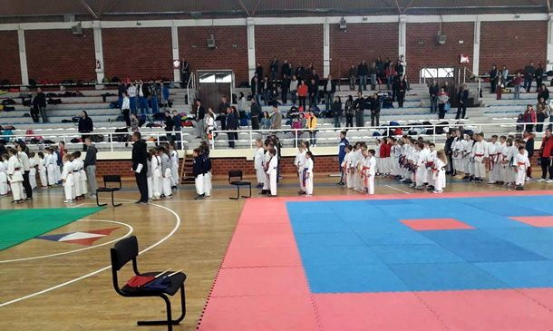 karate-vidoje-andric-1