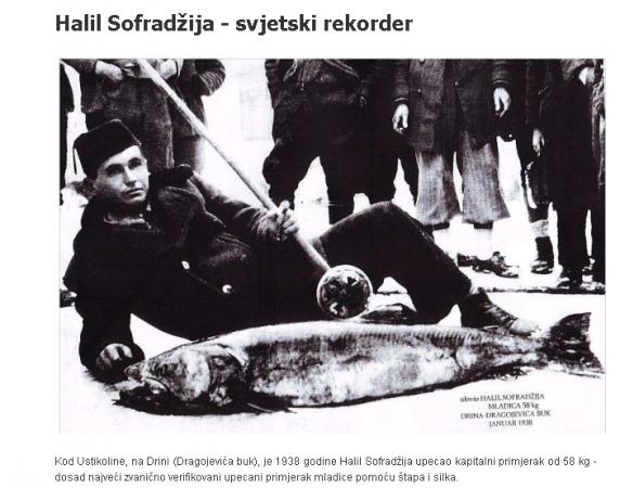 halil-572x450