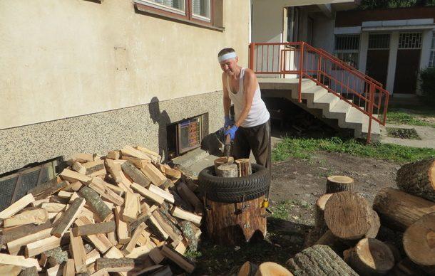 zeko-jovicic-cijepa-drva-2