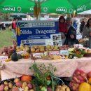 dzida-stand