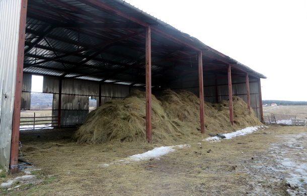hangar-na-borikama